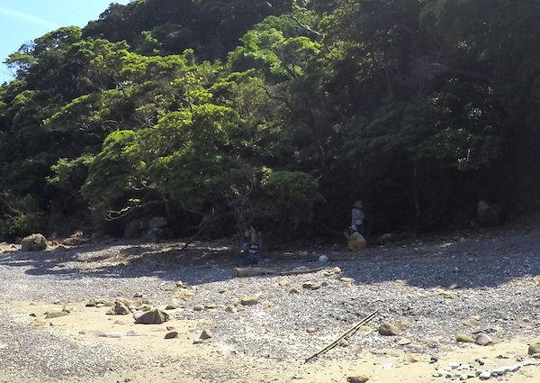f:id:kawabatamasami:20160510114558j:plain