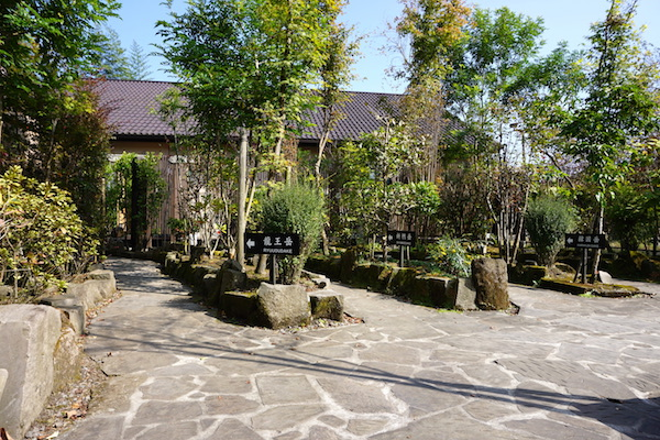 f:id:kawabatamasami:20160606113036j:plain