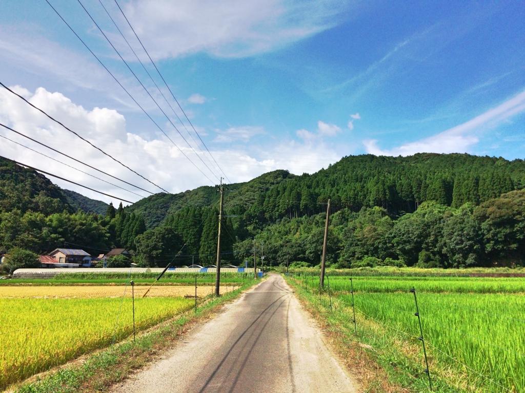 f:id:kawabatamasami:20160731165231j:plain