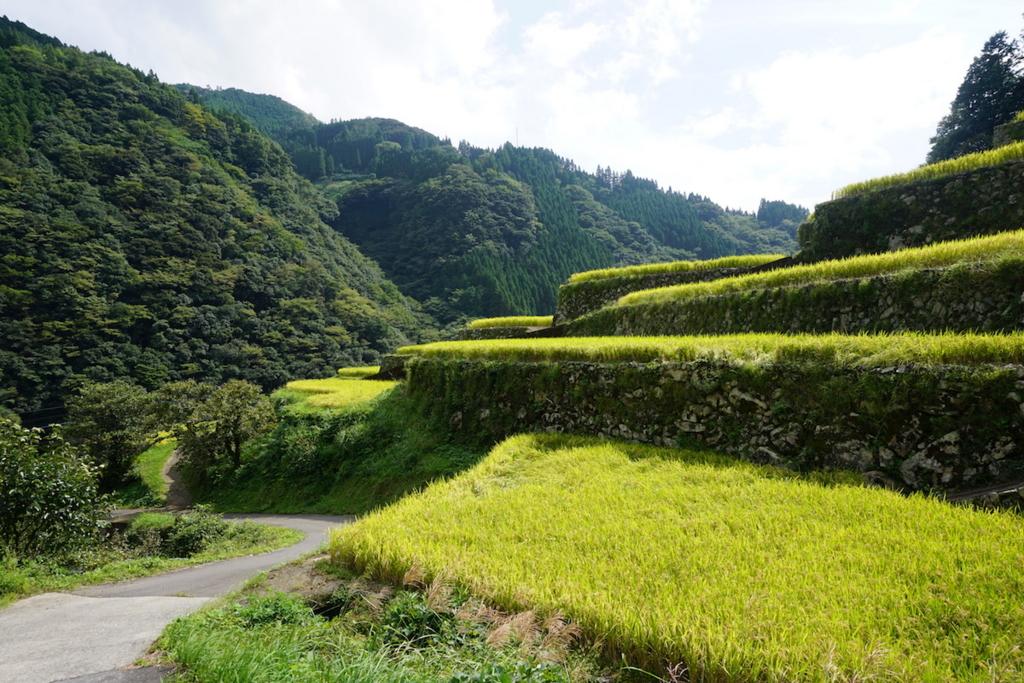 f:id:kawabatamasami:20161005123548j:plain