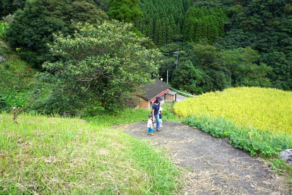 f:id:kawabatamasami:20161005124044j:plain