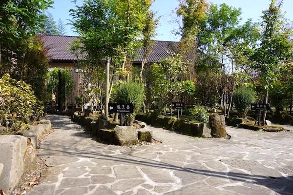 f:id:kawabatamasami:20170105112413j:plain