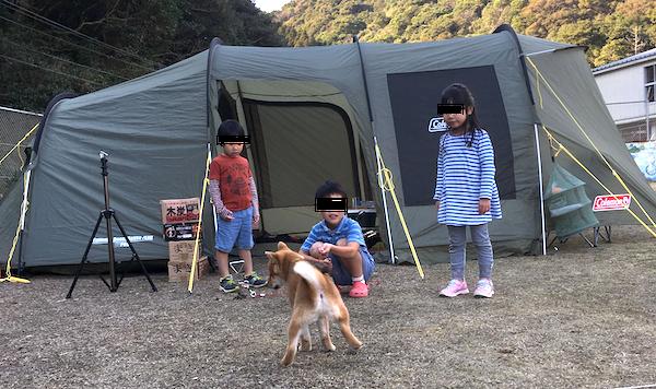 f:id:kawabatamasami:20190130165652p:plain