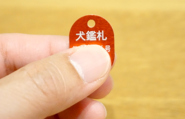 f:id:kawabatamasami:20190222231039j:plain
