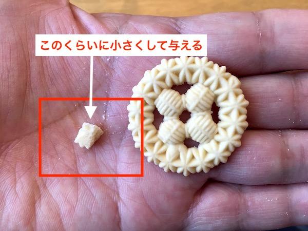 f:id:kawabatamasami:20190510075457j:plain