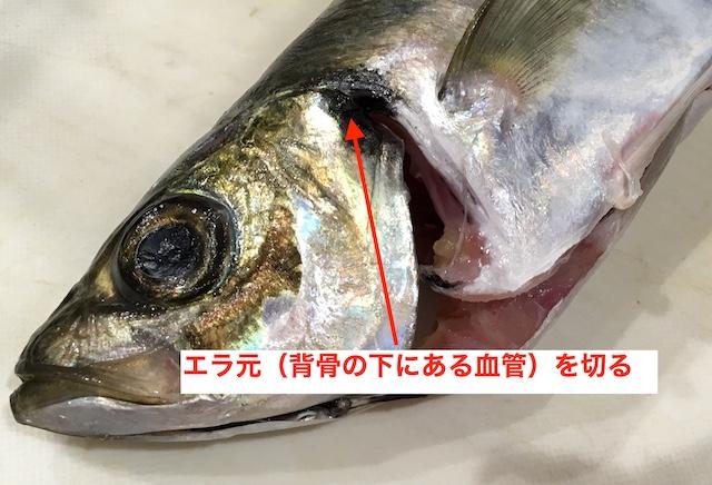 f:id:kawabatamasami:20190601190118j:plain