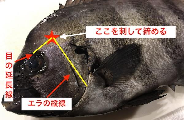 f:id:kawabatamasami:20190606211459j:plain