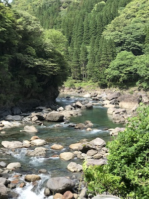 f:id:kawabatamasami:20200528082434j:plain