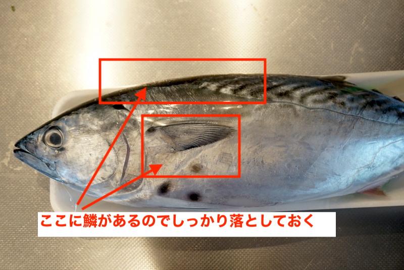 f:id:kawabatamasami:20201210082541j:plain
