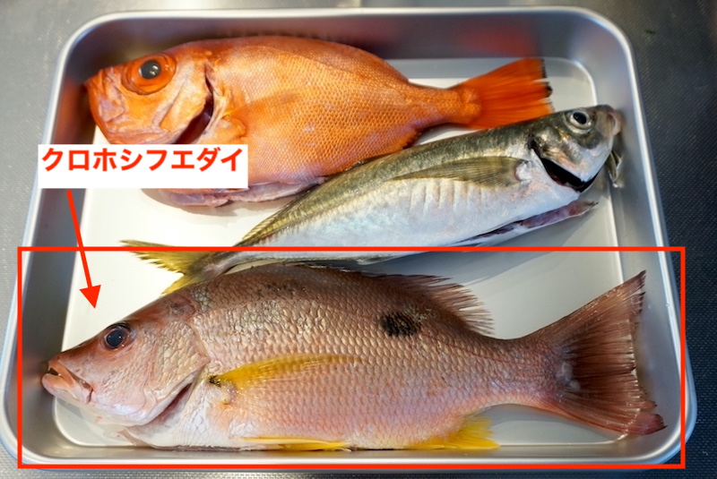 f:id:kawabatamasami:20201214080335j:plain