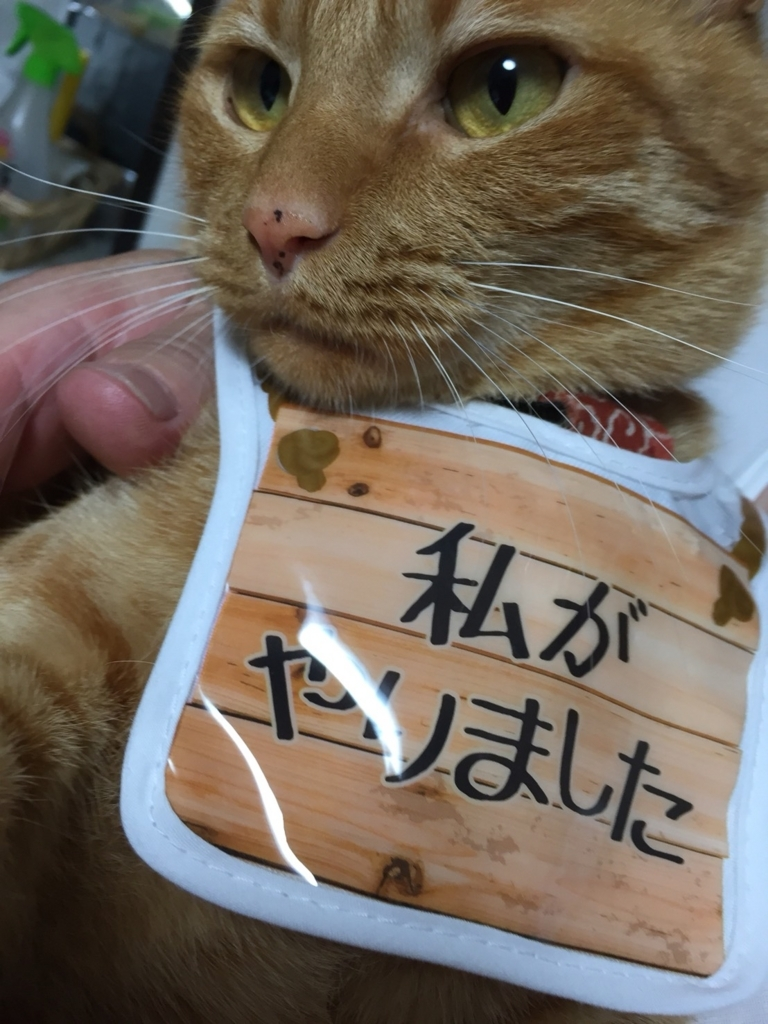 f:id:kawabutanosato:20180527095730j:plain