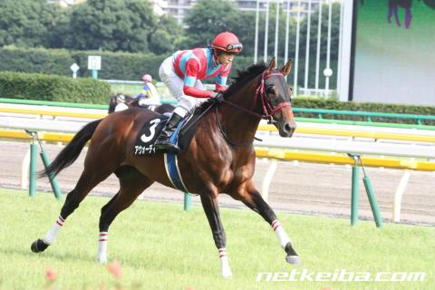 f:id:kawachinothoroughbred:20160820125229j:plain
