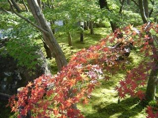 f:id:kawacho:20051107001347j:image