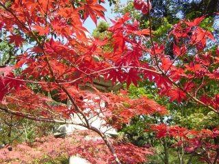 kyoto-05.jpg