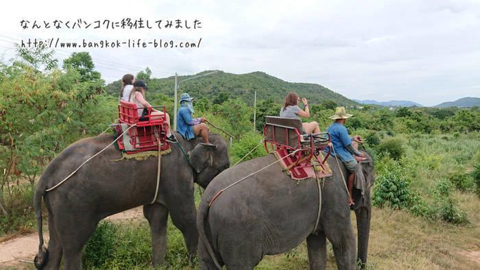 ホアヒンで象に乗る エレファント ビレッジ(Elephant Village)