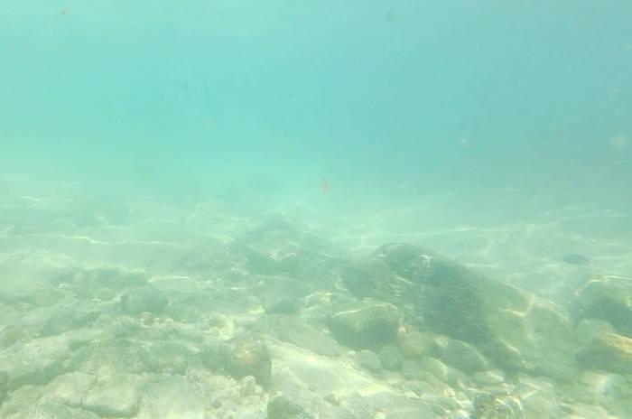 サメット島でシュノーケリング