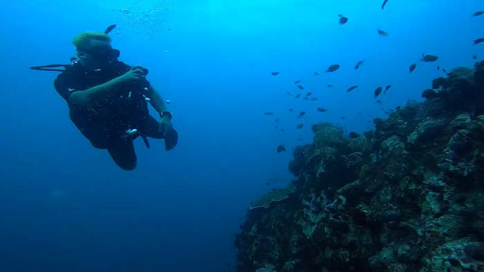 タオ島でスキューバーダイビングのライセンスをゲット