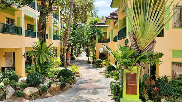 サムイ島のホテル チャバ カバナ ビーチ リゾートの紹介