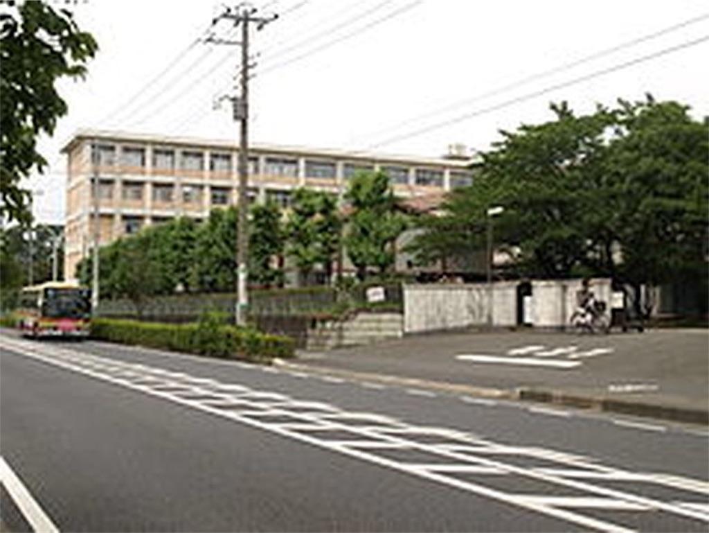 f:id:kawaiikoippai:20190416184445j:image