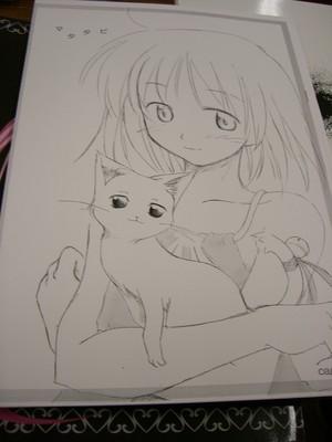 f:id:kawaiikuo:20060723130135j:image