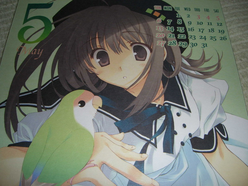 f:id:kawaiikuo:20070504214350j:image
