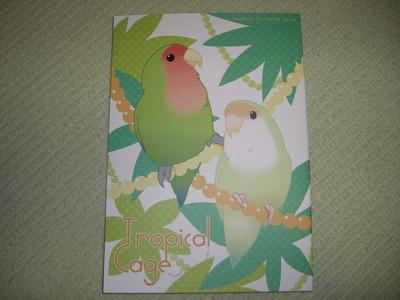 f:id:kawaiikuo:20070524052915j:image