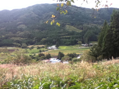 f:id:kawaiikuo:20100924133432j:image