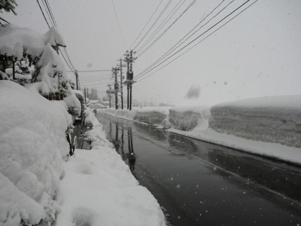 f:id:kawaiikuo:20120219132747j:image