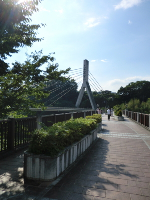 f:id:kawaiikuo:20120804153841j:image