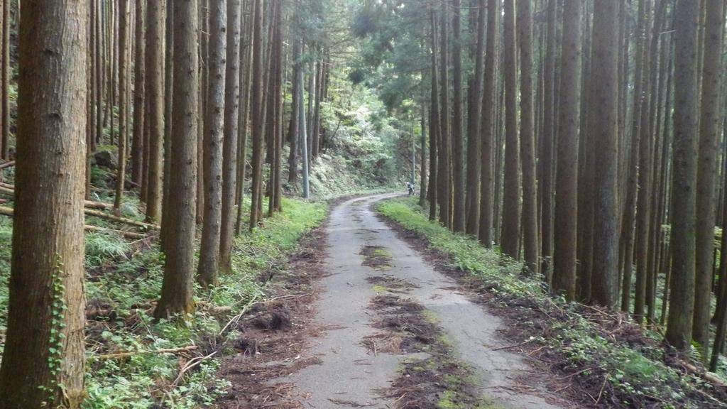 f:id:kawajima-zx14:20181103231635j:plain