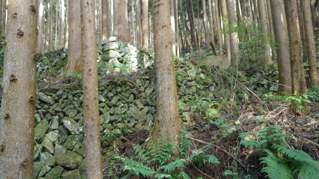 f:id:kawajima-zx14:20181103231657j:plain