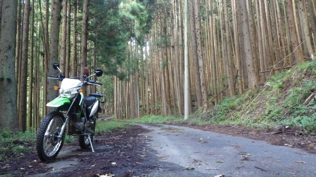 f:id:kawajima-zx14:20181103233037j:plain