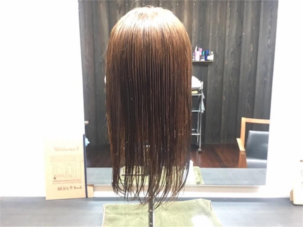f:id:kawanabehiroki:20180223102201j:image