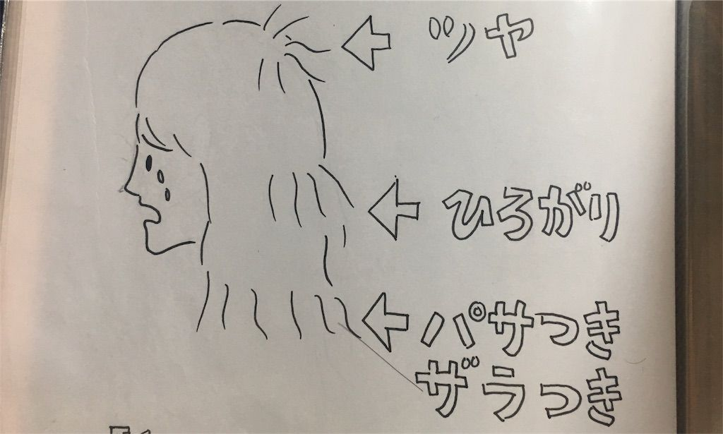 f:id:kawanabehiroki:20180306181252j:image