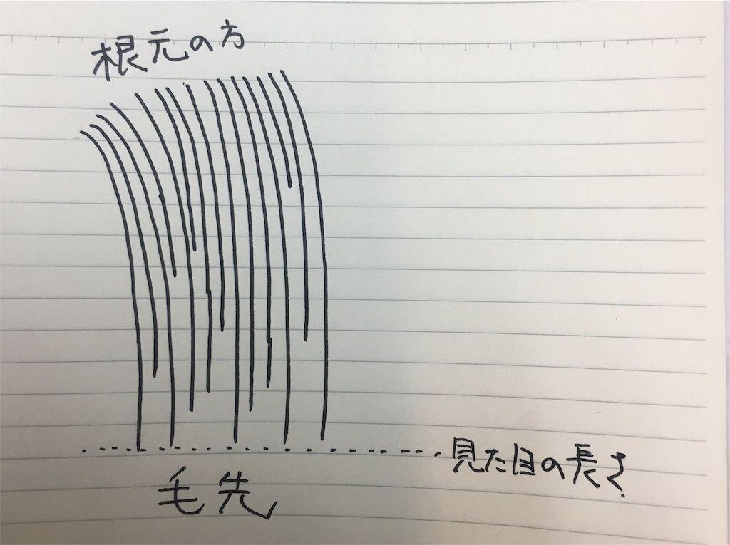 f:id:kawanabehiroki:20180306182810j:image