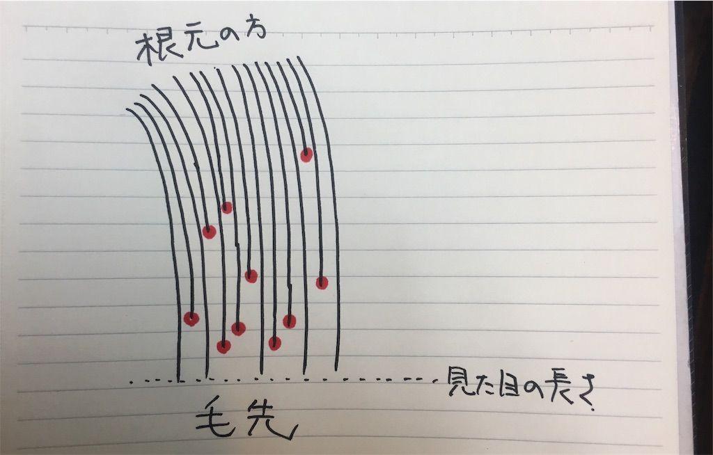 f:id:kawanabehiroki:20180306183242j:image