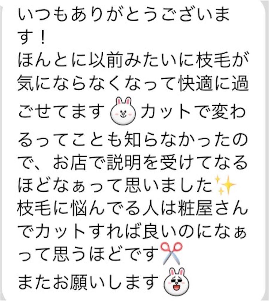 f:id:kawanabehiroki:20180328154709j:image
