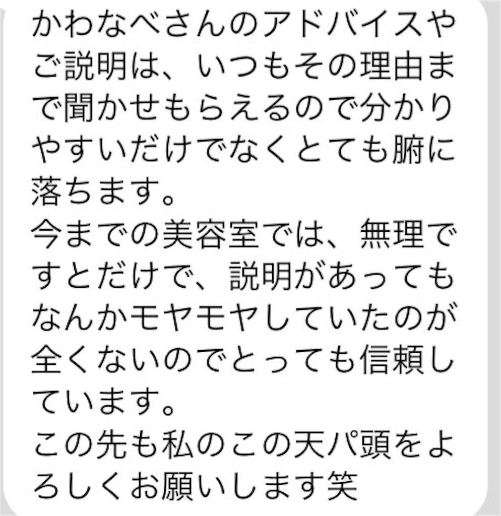 f:id:kawanabehiroki:20180328165250j:image