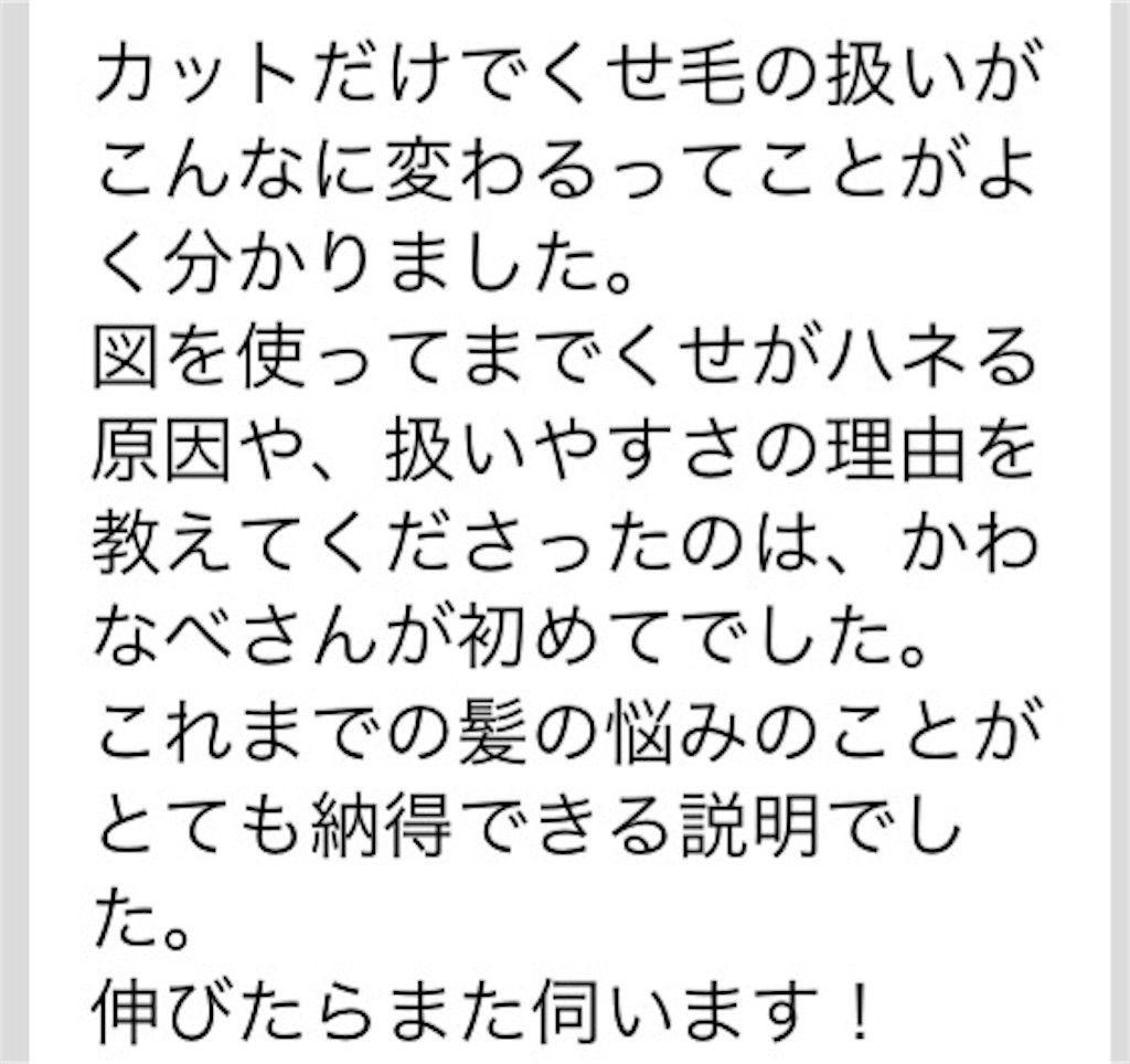 f:id:kawanabehiroki:20180426150236j:image