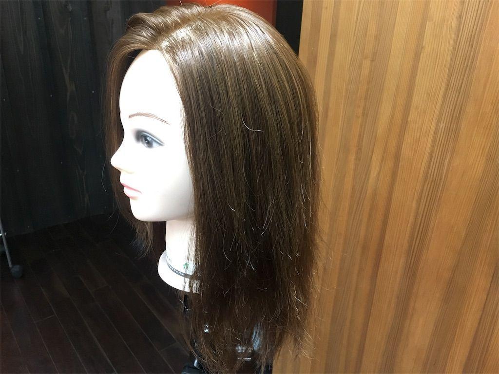 f:id:kawanabehiroki:20180508153127j:image