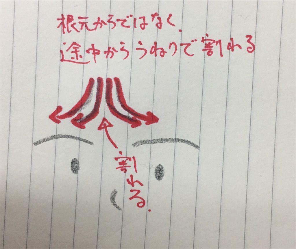 f:id:kawanabehiroki:20180516190111j:image