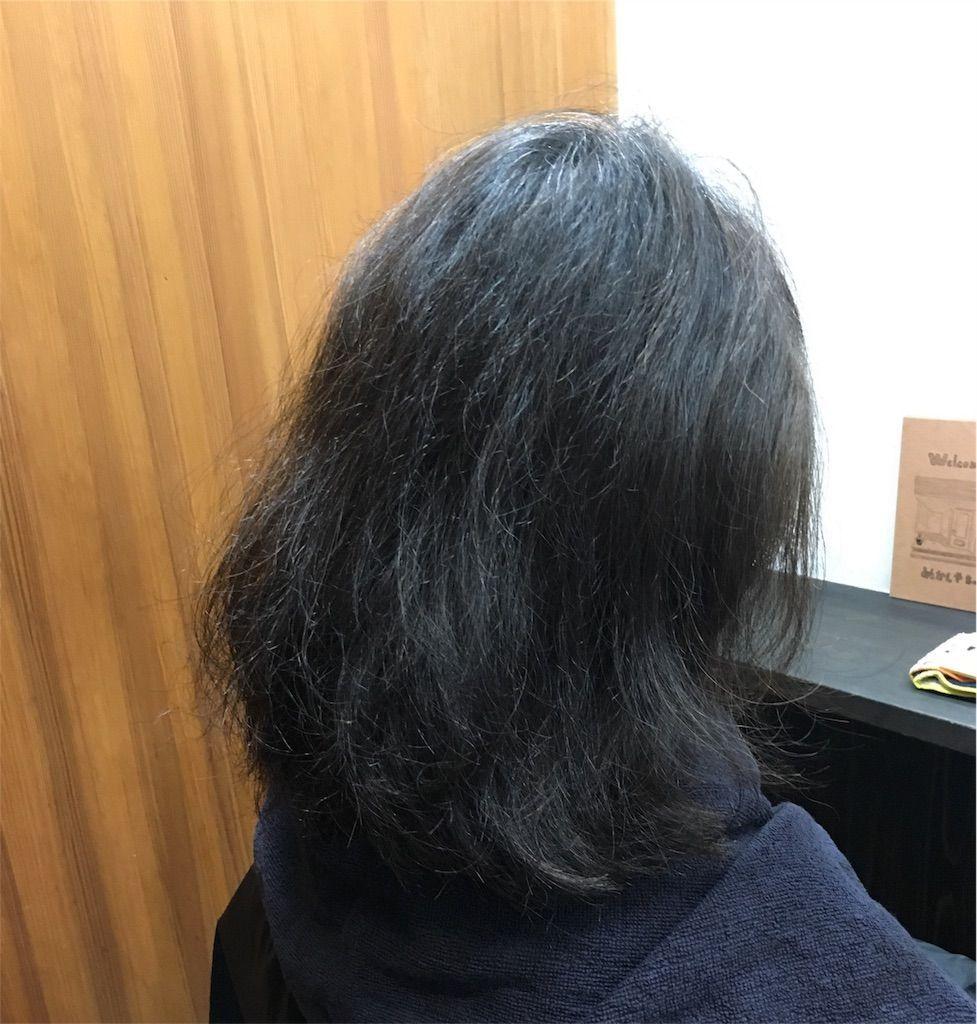 f:id:kawanabehiroki:20180517152119j:image