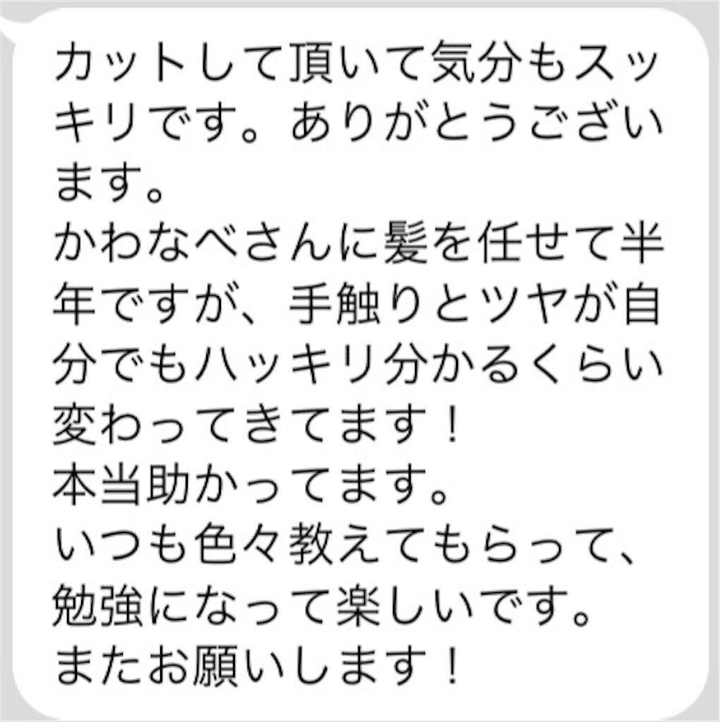 f:id:kawanabehiroki:20180615184003j:image
