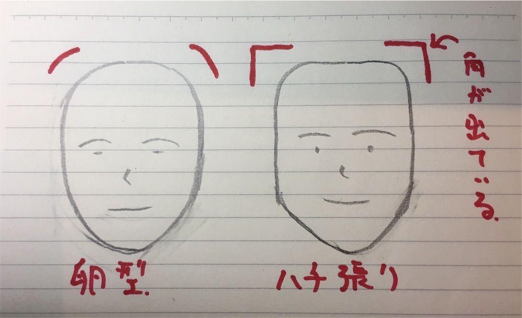 f:id:kawanabehiroki:20180622094516j:image