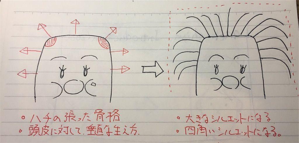 f:id:kawanabehiroki:20180622095228j:image