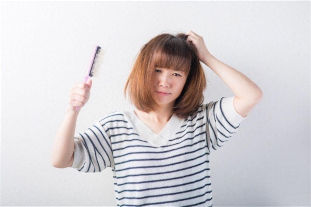 f:id:kawanabehiroki:20180622103313j:image