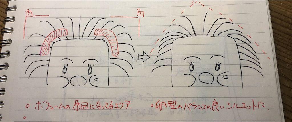 f:id:kawanabehiroki:20180622103802j:image