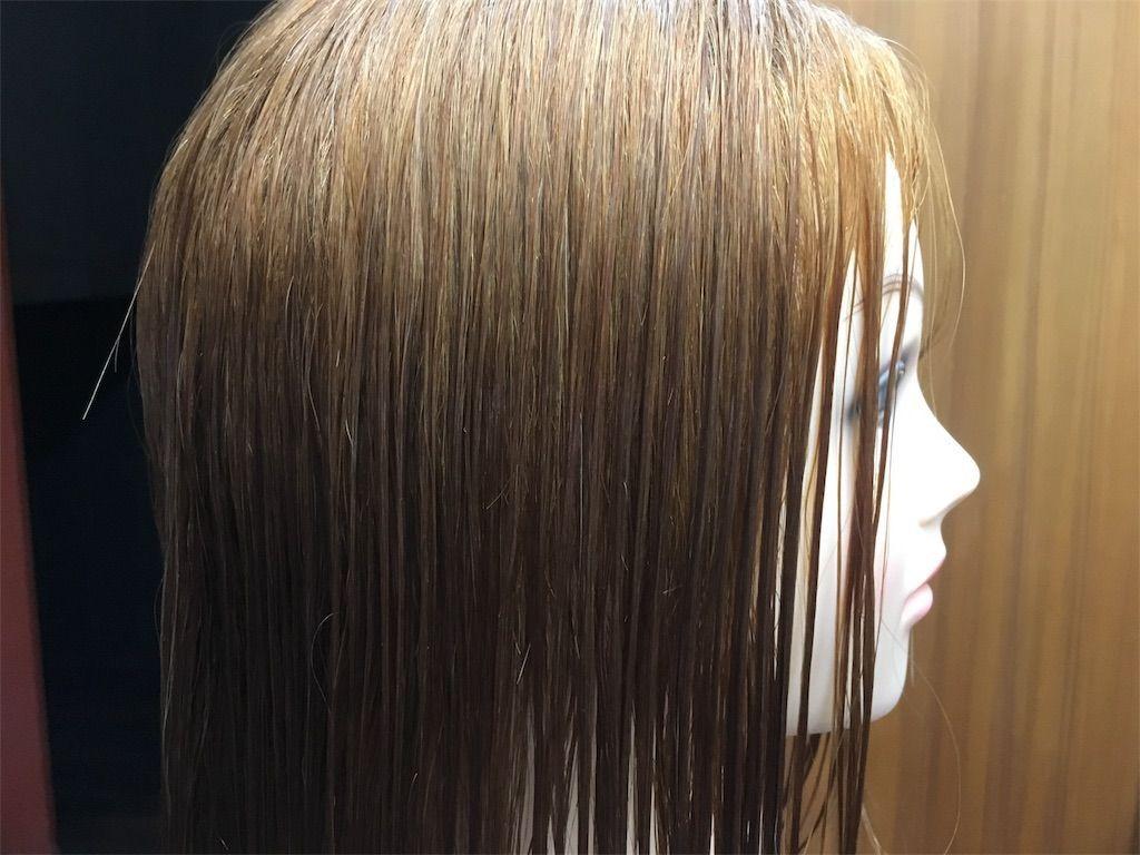 f:id:kawanabehiroki:20180719173610j:image