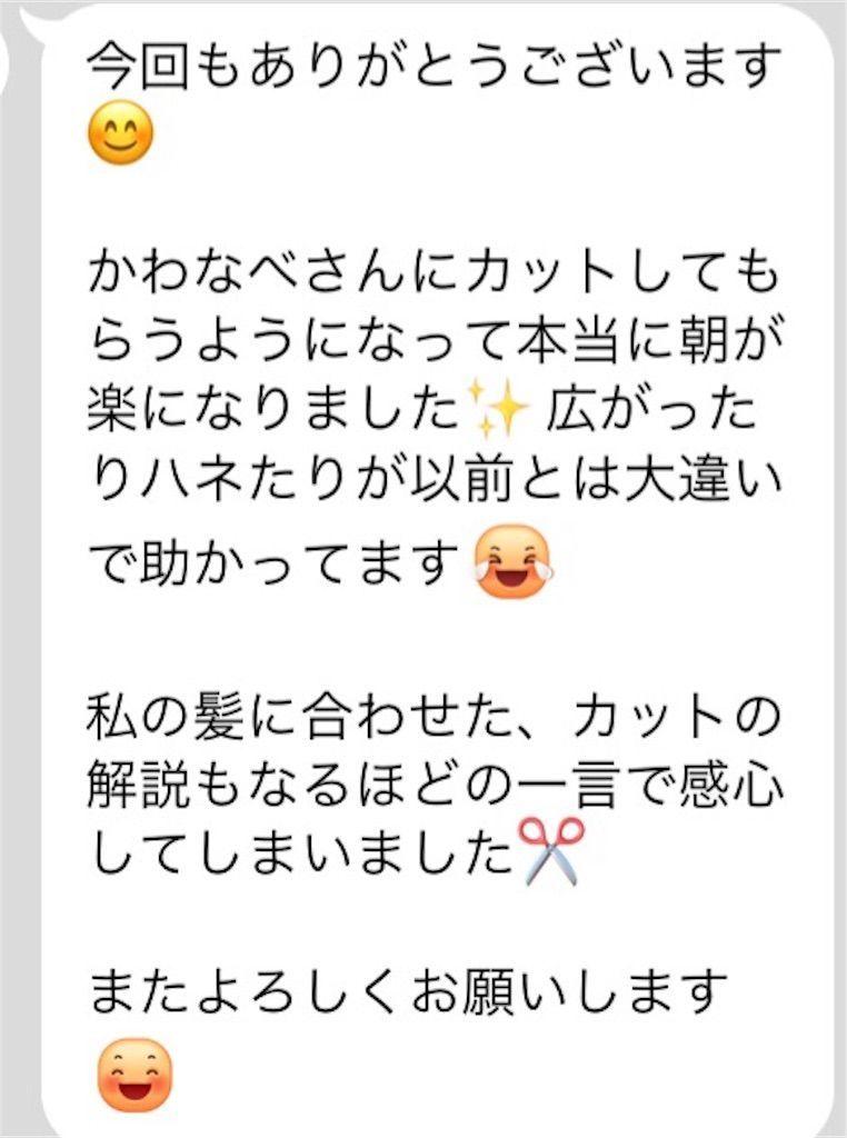 f:id:kawanabehiroki:20180722123428j:image