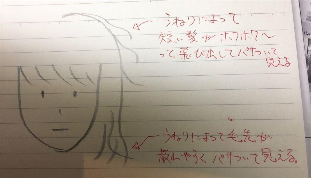 f:id:kawanabehiroki:20180802123058j:image